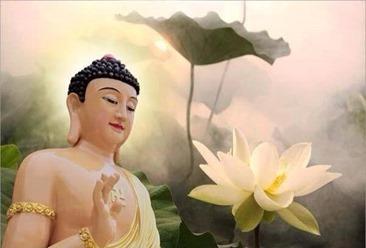 Lời muốn nói 975-Phật dạy bốn loại người
