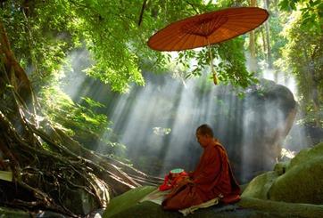 Vô thường và vẻ đẹp cuộc sống dưới góc nhìn đạo Phật